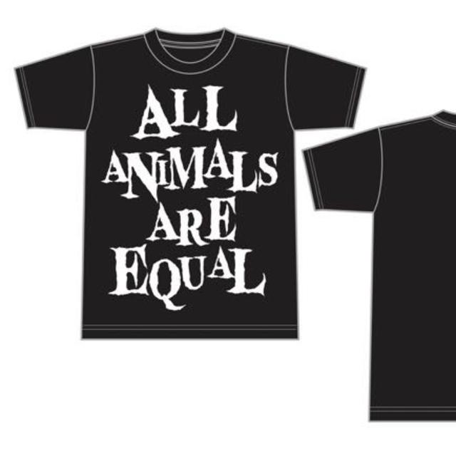 分け売り!AA=[re:Rec]Tシャツ Mサイズの通販 by 黄昏じぃじ's shop ...