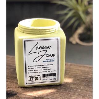 【プランター】ジャム瓶をイメージしたポット ジャム・ポット(プランター)