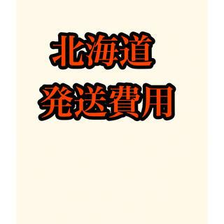 北海道発送費用(その他)
