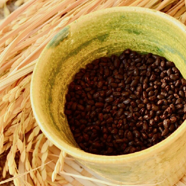 玄米珈琲と塩米こうじスペシャルセット 食品/飲料/酒の飲料(コーヒー)の商品写真