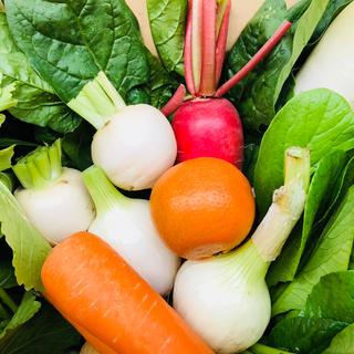 無農薬 朝採り野菜 5キロ箱いっぱい 80サイズ 鹿児島県産(野菜)
