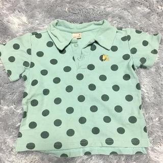 プティマイン(petit main)のプティマイン ポロシャツ 90㎝(Tシャツ/カットソー)
