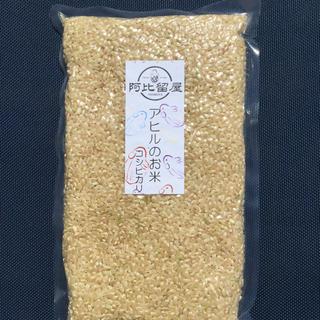 「アヒルのお米」コシヒカリ【食味値84】H29年度岡山県産:玄米♪3合入り×2袋(米/穀物)