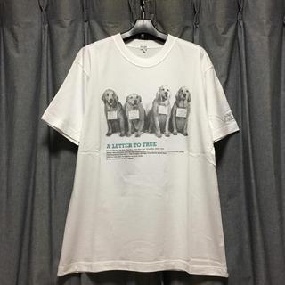 ポールスミス(Paul Smith)の美品 希少サイズXL Bruce Weber Tシャツ ブルースウェーバー(Tシャツ/カットソー(半袖/袖なし))