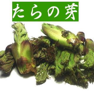 終了しました☆最上の天然たらの芽400g1,980円☆山形から(野菜)