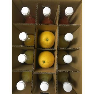 河内晩柑6玉+ストレートジュース3種(フルーツ)