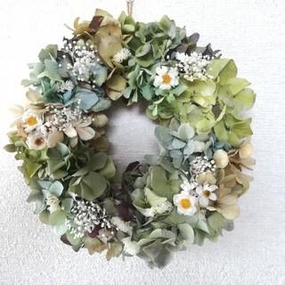 〈再販〉[送料無料]ドライフラワーリース◆あじさいと白いお花と、(ドライフラワー)