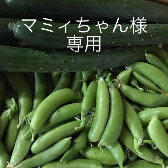 マミィちゃん様専用 食品/飲料/酒の食品(野菜)の商品写真