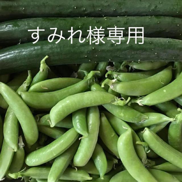 すみれ様専用 食品/飲料/酒の食品(野菜)の商品写真