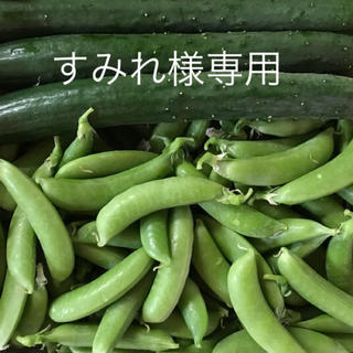 すみれ様専用(野菜)