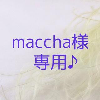 maccha様 専用ページです♪(ドライフラワー)