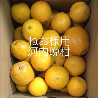 河内晩柑10キロ箱(正味重量8キロ)(フルーツ)