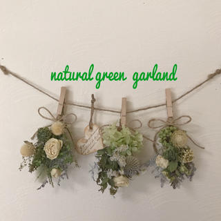 natural green  garland       4点セット(ドライフラワー)