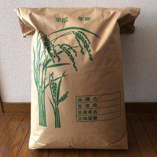 H29年産こしひかり、白米(無洗米)20kg(米/穀物)