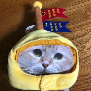 スリーコインズ(3COINS)の新品 こいのぼり ペット用かぶりもの 帽子(猫)