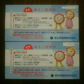 東京都競馬 株主優待 東京サマーランドフリーパス券 2冊 (その他)