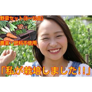 農薬・肥料不使用野菜セットM 8〜10品 フリル版(野菜)