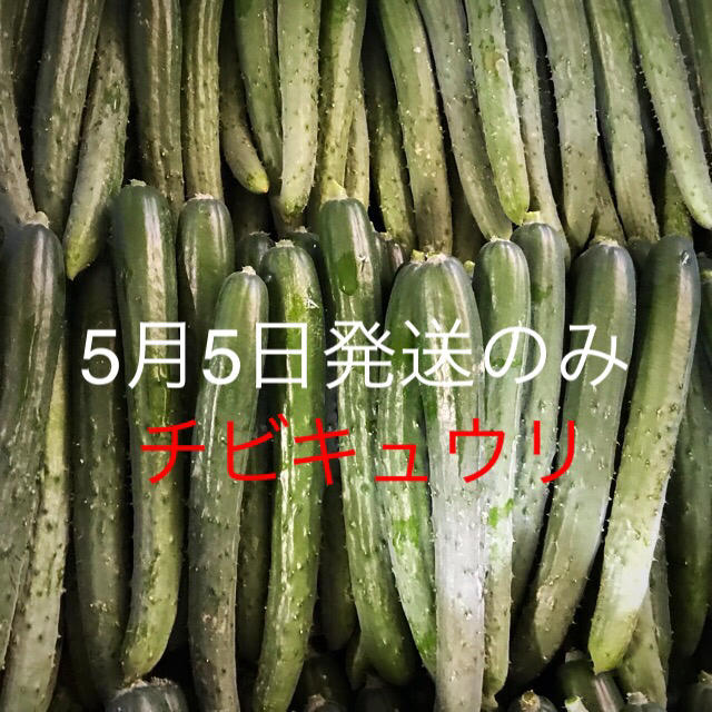 F様専用 食品/飲料/酒の食品(野菜)の商品写真