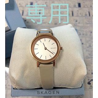 スカーゲン(SKAGEN)のSKAGEN(Hald Leather Watch)SKW2494(腕時計)