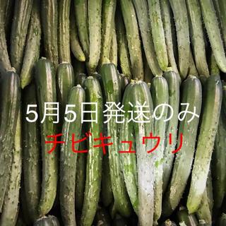 ゆうひ様専用(野菜)