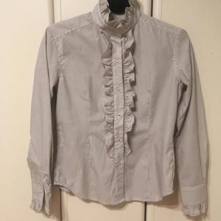 シャツ(shirts)のレディースブラウス(シャツ/ブラウス(長袖/七分))