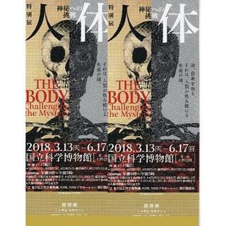 人体 神秘への挑戦  招待券2枚(会期終了迄)在庫有!(美術館/博物館)