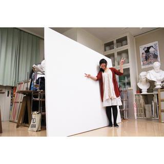 【新品】特大張りキャンバス 綿化繊混紡 TC F150