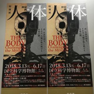 人体展 チケット 2枚 国立科学博物館(美術館/博物館)