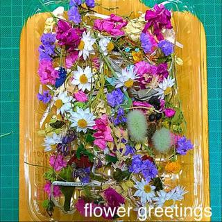ドライフラワー 花材 素材 現品限り 16×11cm 詰められるだけ!(ドライフラワー)