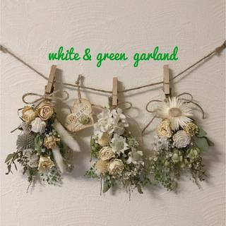 white & green  garland      4点セット(ドライフラワー)