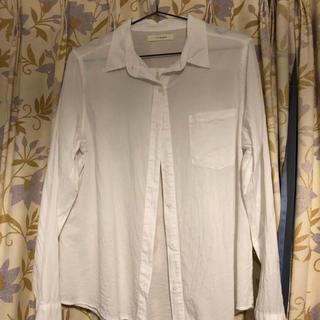 シンシア(cynthia)のシャツ(シャツ/ブラウス(長袖/七分))