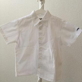 美品 白 シャツ 110 タケオ キクチ