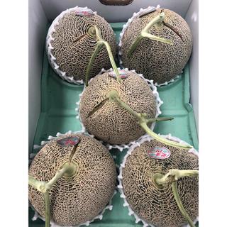 熊本県産 肥後グリーンメロン 1箱(フルーツ)