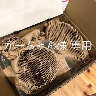 キャトルセゾン(quatre saisons)のかーちゃん様専用 キャトルセゾン お皿セット価格 (食器)