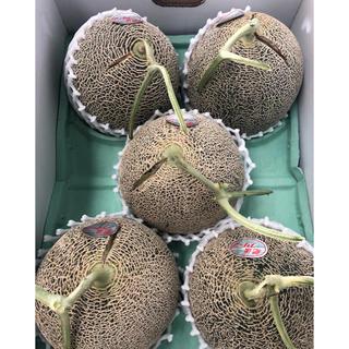 熊本県産 肥後グリーンメロン 5〜6玉(フルーツ)