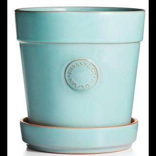 ティファニー(Tiffany & Co.)のティファニー フラワーポット新作 terra-cotta 超レア 日本未入荷(その他)