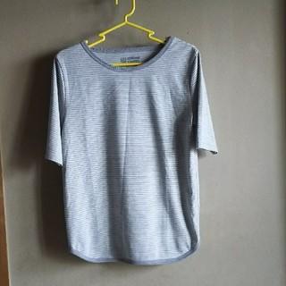 セダークレスト(CEDAR CREST)のボーダー T シャツ(Tシャツ(半袖/袖なし))