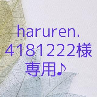 haruren.4181222様 専用ページです♪(ドライフラワー)