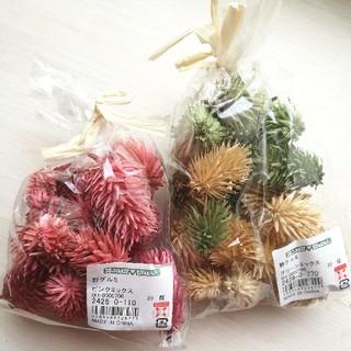 杏様専用■花材野グルミ 新品未使用品 2個セット(ドライフラワー)