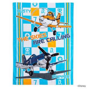 ディズニー(Disney)のお昼寝タオル プレーンズ(タオルケット)