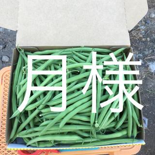 鹿児島産サヤインゲン  1キロ^_^並べず曲がり混合^_^(野菜)
