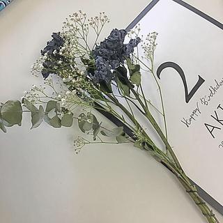 かすみと紫陽花のスワッグ(ドライフラワー)