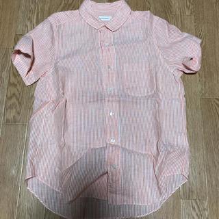 スティールエコンフォール(style+confort)のstyle+confort ストライプシャツ(シャツ/ブラウス(半袖/袖なし))