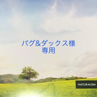 シマムラ(しまむら)の新品 銀魂 定春 tシャツ L 缶バッジ 3個付き(Tシャツ(半袖/袖なし))