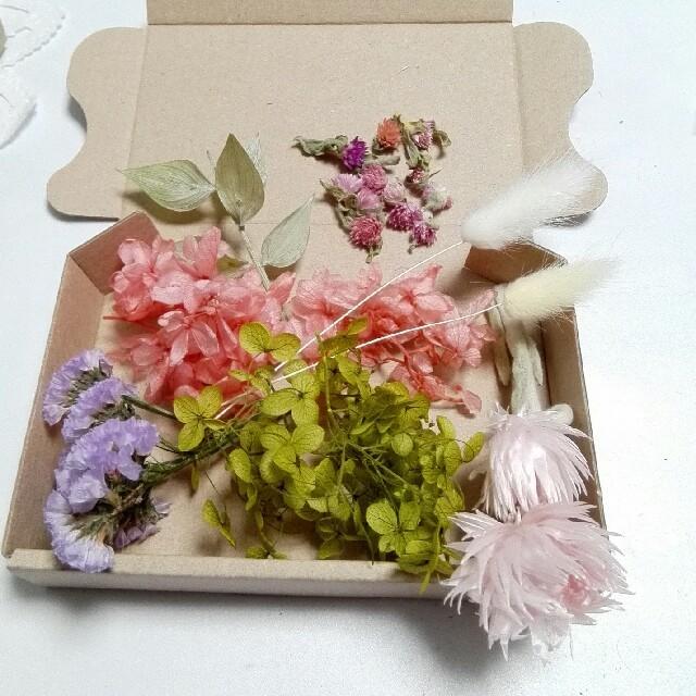 お買得 ハーバリウム花材セット ハンドメイドのフラワー/ガーデン(ドライフラワー)の商品写真