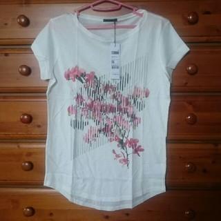 新品SISLEY Tシャツ
