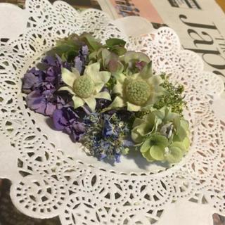 紫陽花とフランネルのドライヘッド(ドライフラワー)