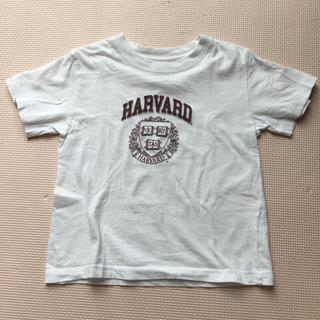 ハーヴァード(HARVARD)のTシャツ 100センチ (Harvard)(Tシャツ/カットソー)