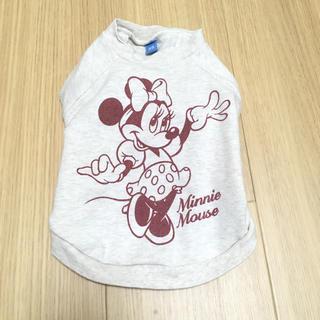 ディズニー(Disney)の犬用 洋服(犬)