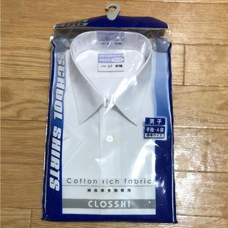シマムラ(しまむら)の半袖 スクールワイシャツ A体 165センチ(ブラウス)